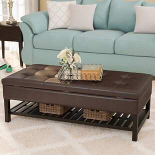 Bargain Fremont Storage Ottoman By Alcott Hill