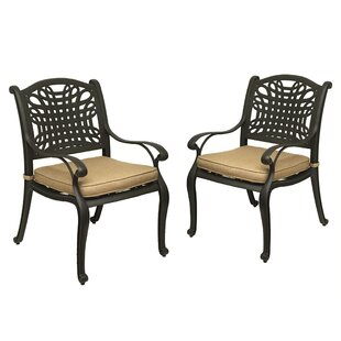Campion Patio Dining Chair with Cushion (Set of 2)