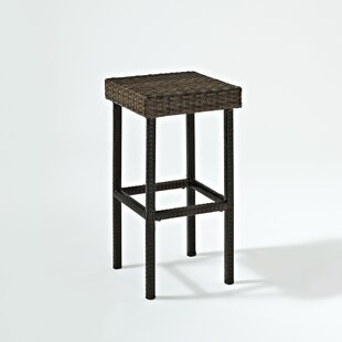 Brandy Patio Bar Stool (Set of 2)
