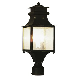 Outdoor Post Lantern by TransG..