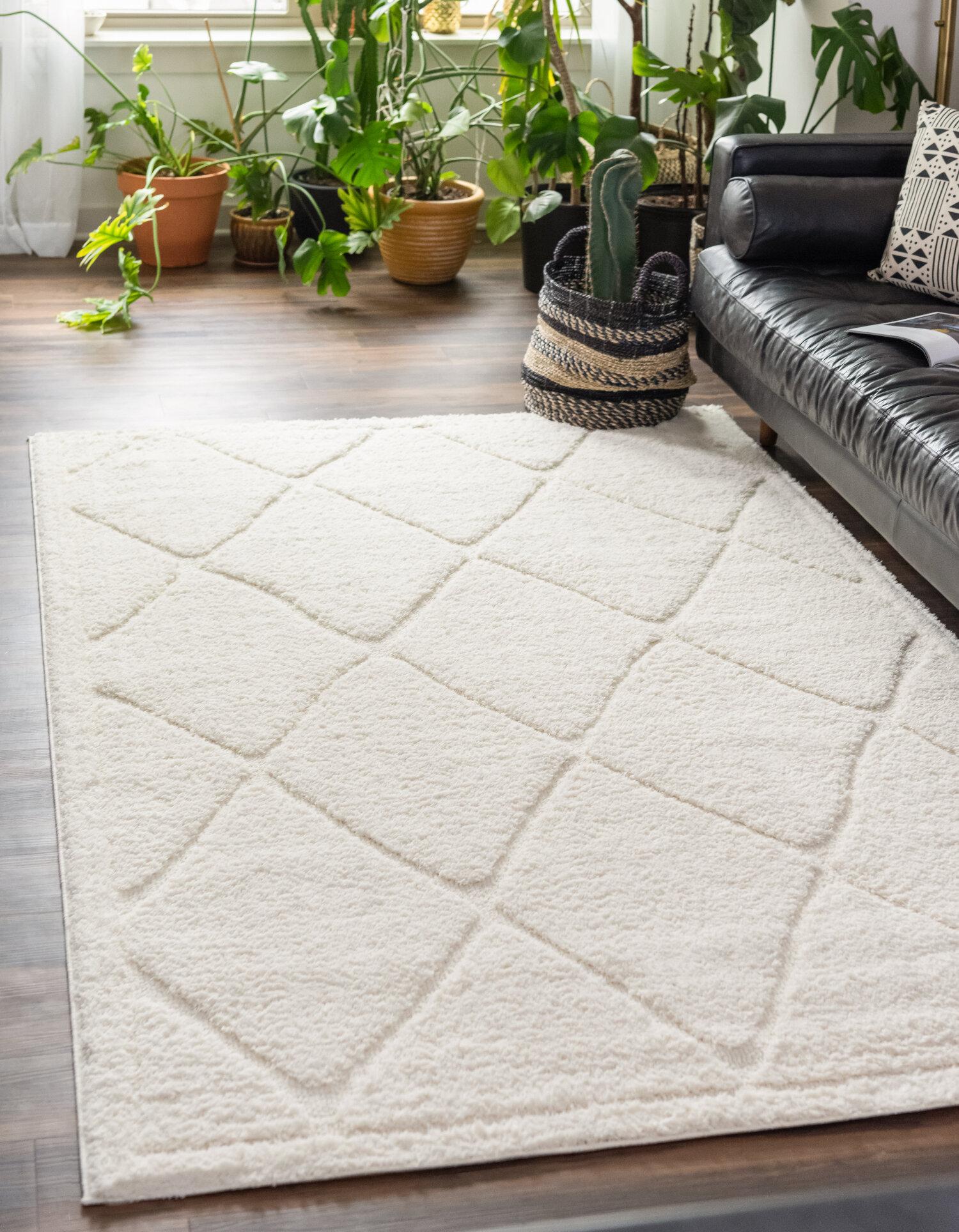 Ebern Designs Agnon Ivory Area Rug Reviews Wayfair