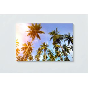 Palm Trees Magnetic Wall Mounted Cork Board By Ebern Designs