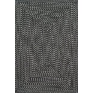 Daniell Hand-Woven Charcoal Indoor/Outdoor Area Rug