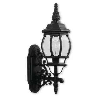Affordable Kelly 1-Light Glass Outdoor Sconce By Darby Home Co