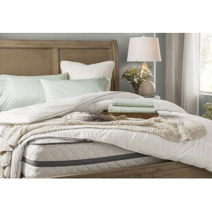 Joss U0026 Main Essentials 300 Thread Count Cotton Solid Sheet Set