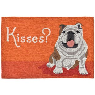 Seavey Hand-Tufted Orange Indoor/Outdoor Area Rug