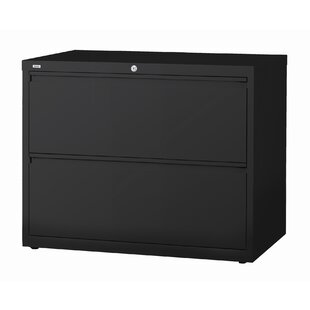 Symple Stuff Nixon 2-Drawer Lateral File