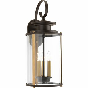 Read Reviews Evgenia 3-Light Outdoor Wall Lantern By 17 Stories