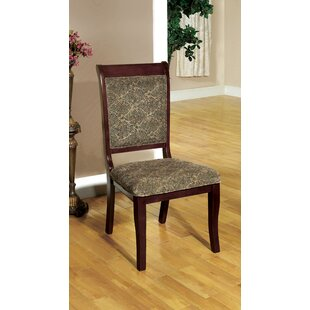 Nikolas Arm Chair (Set of 2) Hokku Designs