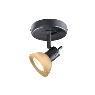 Niven Outdoor Security Spotlight