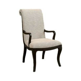 Aric Armchair (Set of 2) by Darby Home Co