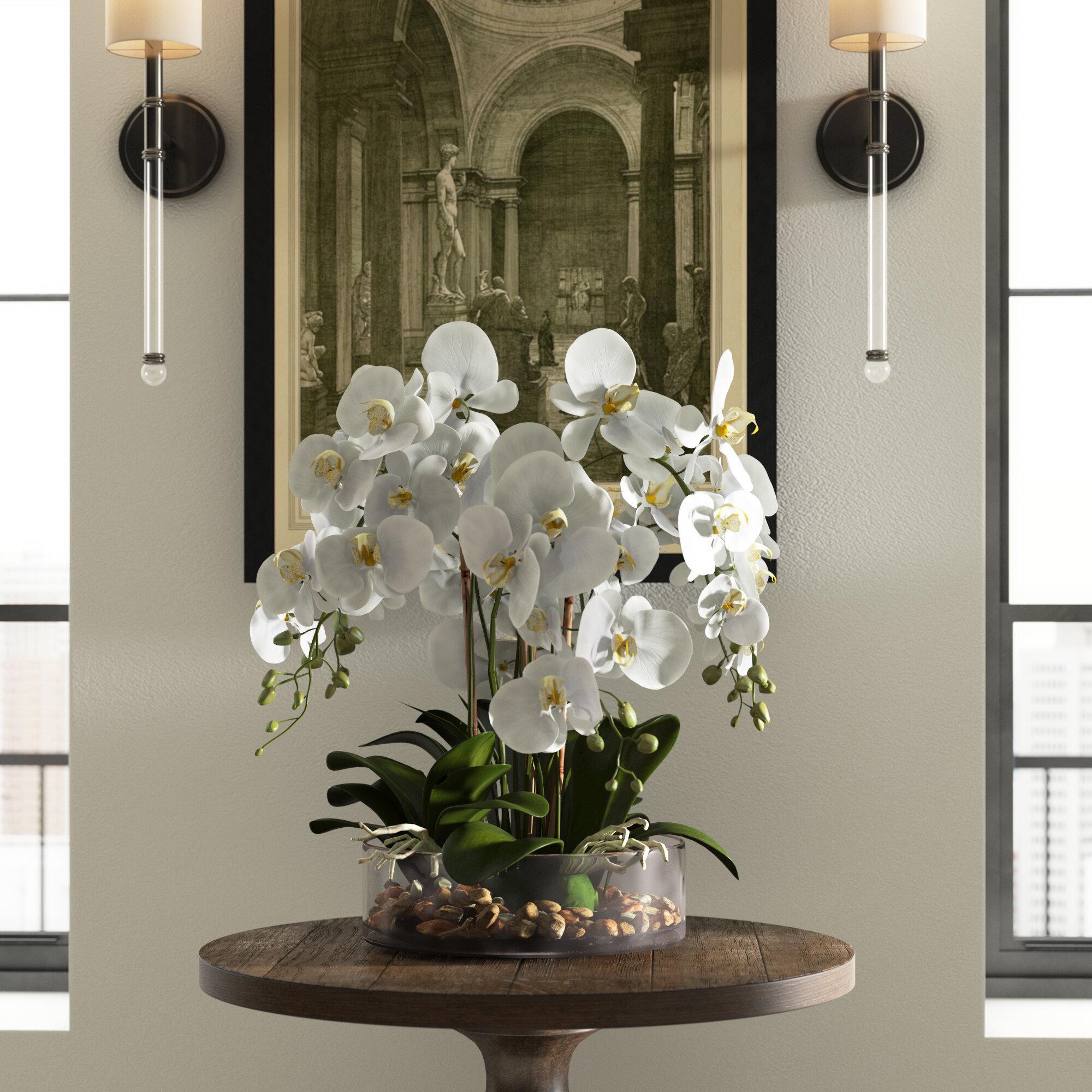 Greyleigh Phalaenopsis Orchid And Vanilla Grass Bush Floral Arrangement In Vase Reviews Wayfair