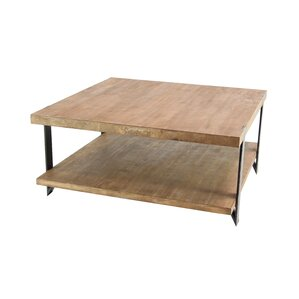 Stephene Modern Wood and Iron 2-Tiered Square Coffee Table with Magazine R..