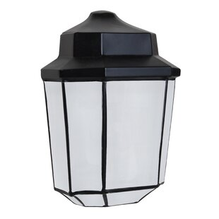 Donnie 1-Light Outdoor Wall Sconce by Latitude Run Fresh