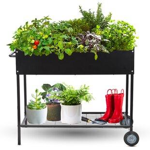 Wayfair Metal Raised Garden Planters You Ll Love In 2021