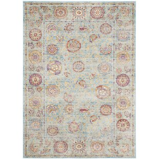 Laura Light Blue/Gold Area Rug by Safavieh