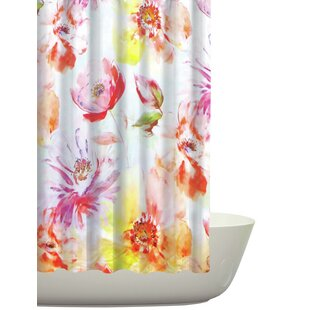 Gellert Cotton Single Shower Curtain