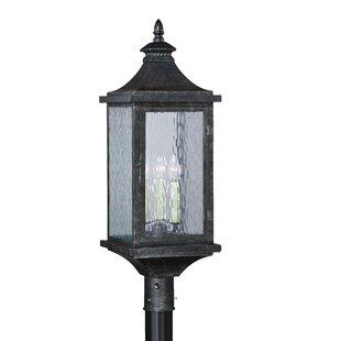 Wilhelmina Outdoor 3-Light Lantern Head by Darby Home Co