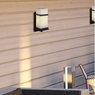 Havana 1-Light Outdoor Sconce