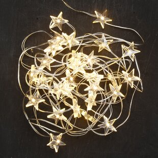 50 Light Multi-Spotlight by Inge's Christmas Decor