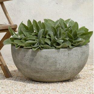 Ivy Bronx Sarr Cast Stone Pot Planter