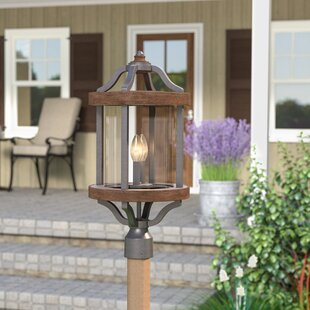 Laurel Foundry Modern Farmhouse Elisabetta 2-Light Lantern Head