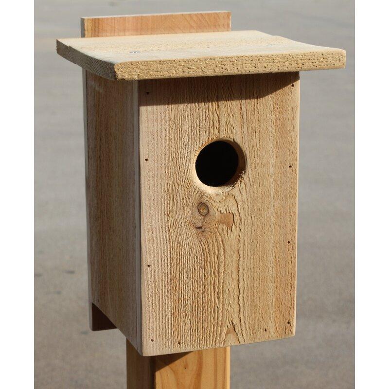 Cedarcreekwoodshop 14 In X 8 In X 6 In Birdhouse Wayfair