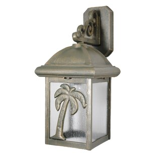 Alcott Hill Penfield 1-Light Outdoor Wall Lantern
