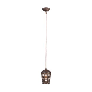 Claverack 1-Light Lantern Pendant by Fleur De Lis Living