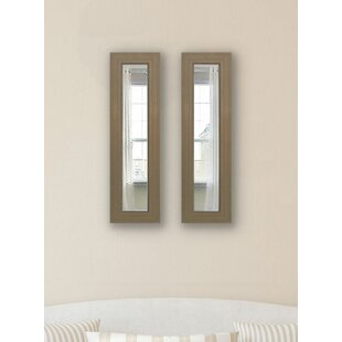 Darby Home Co Panel 2 Piece Mirror Set (Set of 2)