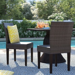 Tegan Patio Dining Chair (Set of 2)