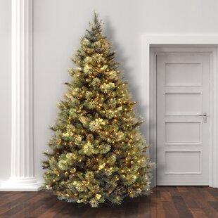 9 Foot Pre-Lit Christmas Trees You'll Love | Wayfair