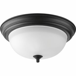 Red Barrel Studio Micadeau Modern 2-Light Flush Mount