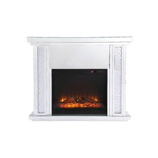 Aanya Electric Fireplace by Ro..