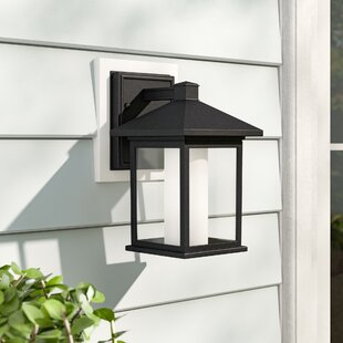 Winston Porter Savala 1-Light Outdoor Wall Lantern
