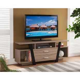 Bustamante Well TV Stand by Foundry Select Cool