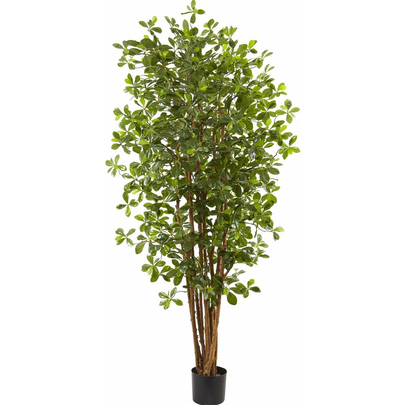 Artificial Olive Tree in Pot
