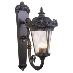 Petrey 3-Light Outdoor Sconce by Alcott Hill