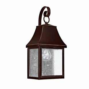 Olsson 1-Light Outdoor Wall Lantern