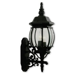 Darby Home Co Kelly 3-Light Beveled Glass Outdoor Sconce