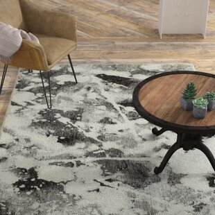 Buy Knox Shadows Charcoal/White Area Rug By Williston Forge