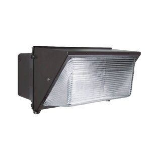 Halide Outdoor Security Wall Pack by Howard Lighting