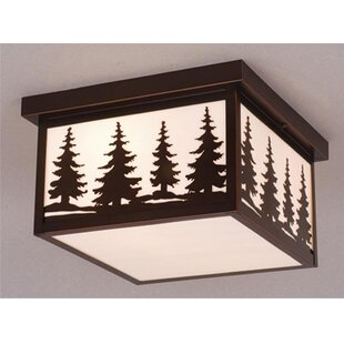 Josefina 2-Light Outdoor Flush Mount
