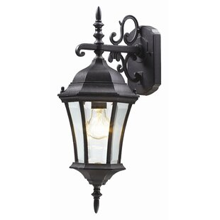 Inexpensive Lyles 1-Light Outdoor Wall Lantern By Astoria Grand