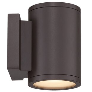 Tube 2-Light LED Outdoor Sconce