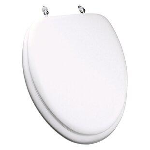 Cushioned Toilet Seats You\'ll Love | Wayfair