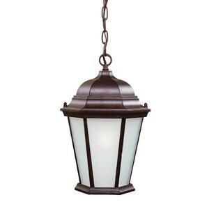 Astoria Grand Bellver 1-Light Outdoor Hanging Lantern