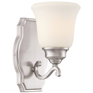 Audane 1-Light Bath Sconce by Darby Home Co
