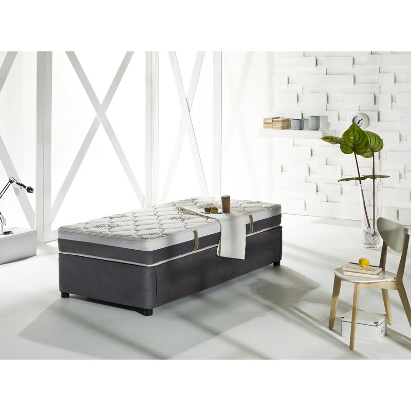 Latitude Run Unknow Four Seasons Daybed With Trundle And Mattress