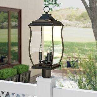 Darby Home Co El Paso 3-Light Lantern Head